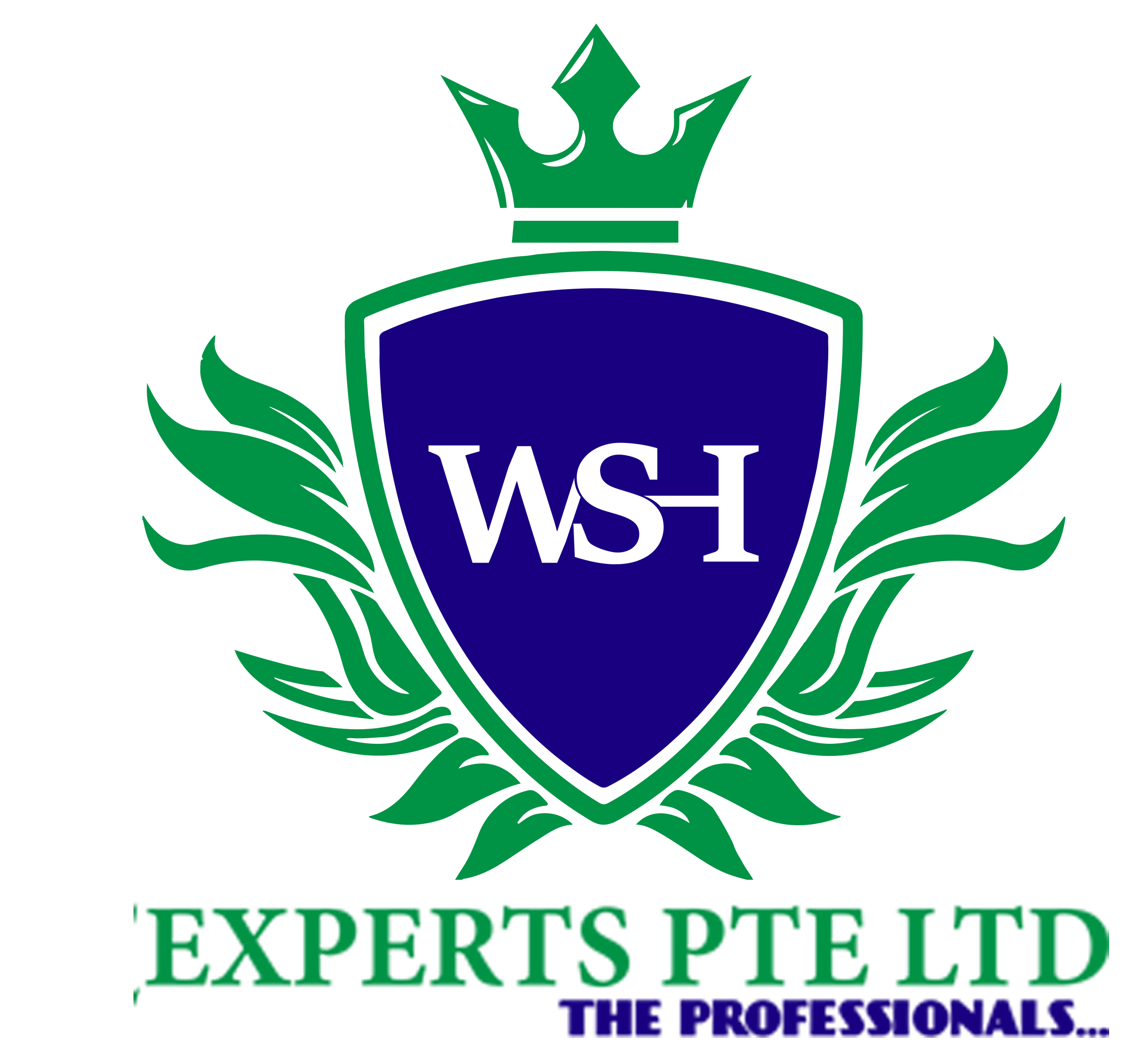 WSH Experts – Careers